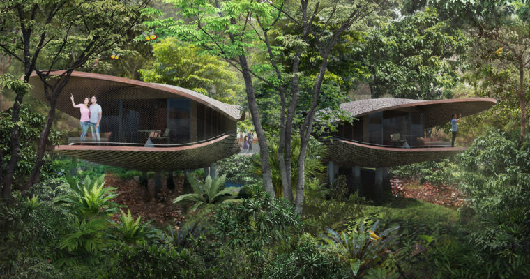 Stay in a Seed Pod Amidst Singapore's Nature